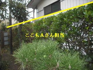 f0031037_2033066.jpg