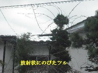 f0031037_20355159.jpg