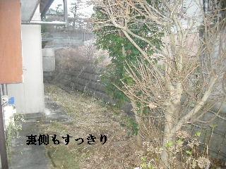 f0031037_20373139.jpg