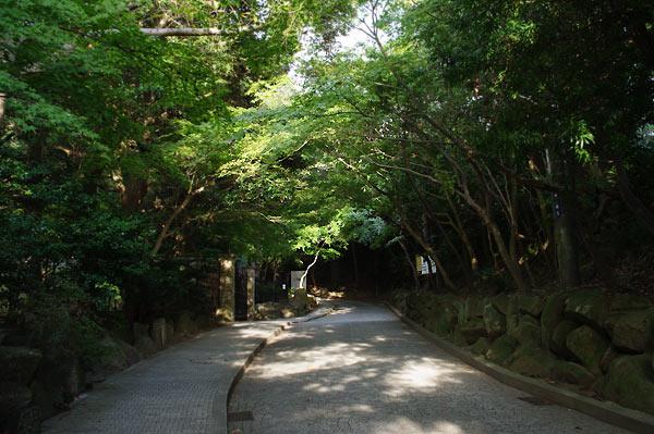 そして鎌倉_d0024242_1555450.jpg