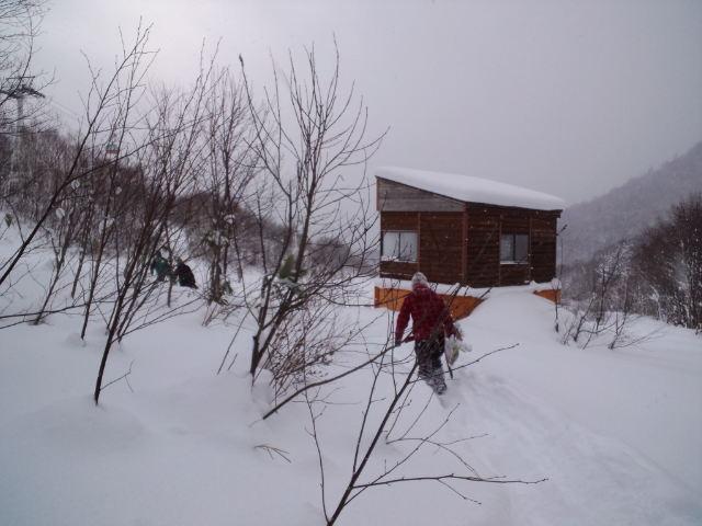 初滑り ☆ 札幌国際スキー場_c0151965_2245020.jpg