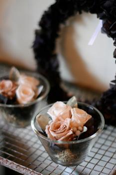 ・今週の鉢物さん_b0209477_1644922.jpg