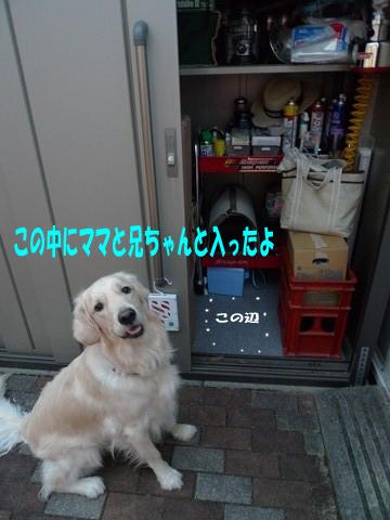 d0043478_22414235.jpg