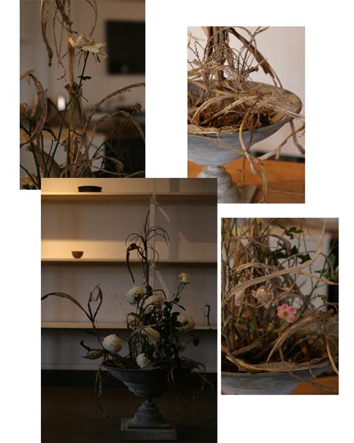 お花の研究会 発足_f0127281_12151613.jpg
