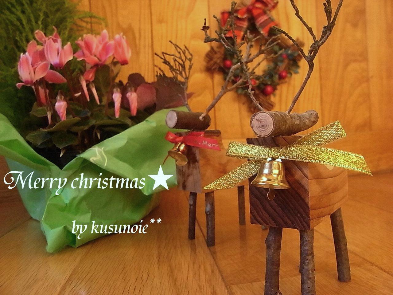 クリスマスがやってくる♪_f0174866_1591677.jpg
