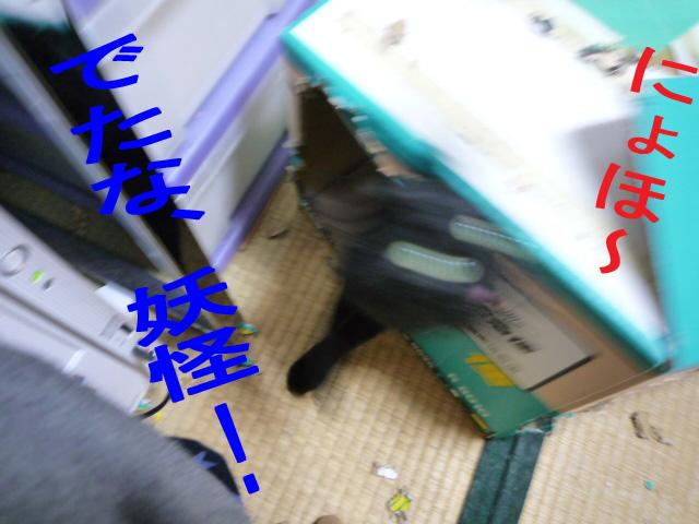 c0183167_21304720.jpg