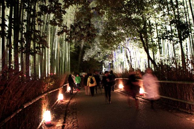 京都・嵐山花灯路2 竹林と野ノ宮_e0048413_11434279.jpg