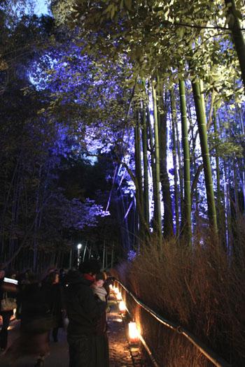 京都・嵐山花灯路2 竹林と野ノ宮_e0048413_11442025.jpg