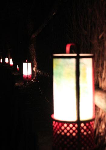 京都・嵐山花灯路2 竹林と野ノ宮_e0048413_1144671.jpg