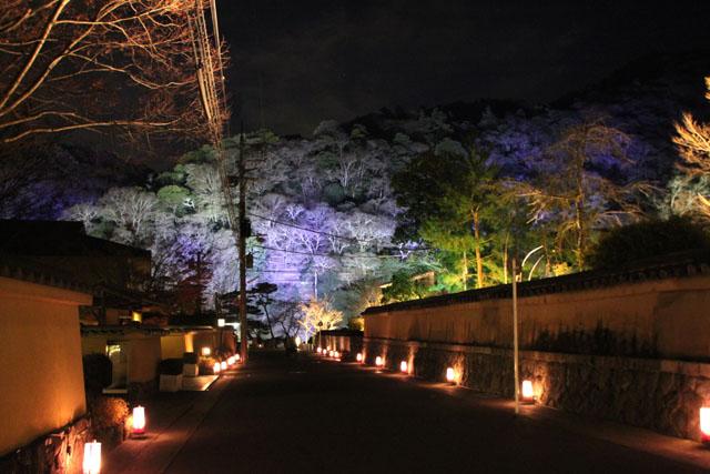 京都・嵐山花灯路3 時雨殿から宝厳院_e0048413_1329307.jpg