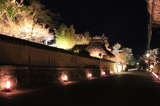 京都・嵐山花灯路3 時雨殿から宝厳院_e0048413_13294567.jpg