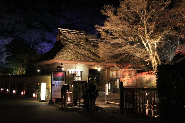 京都・嵐山花灯路3 時雨殿から宝厳院_e0048413_1330073.jpg