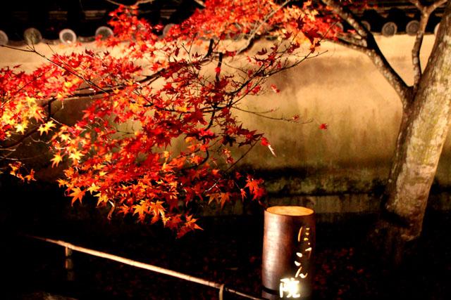 京都・嵐山花灯路3 時雨殿から宝厳院_e0048413_13301552.jpg