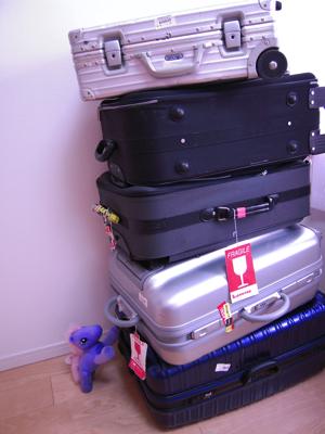 スーツケースDSCN0317(変換後)