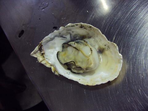 牡蠣を食べに・・・牟礼へGO_f0207932_11494956.jpg