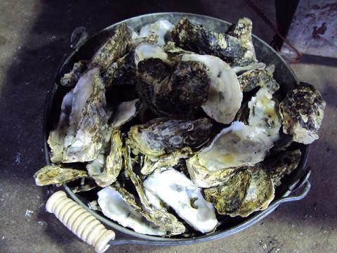 牡蠣を食べに・・・牟礼へGO_f0207932_11501750.jpg