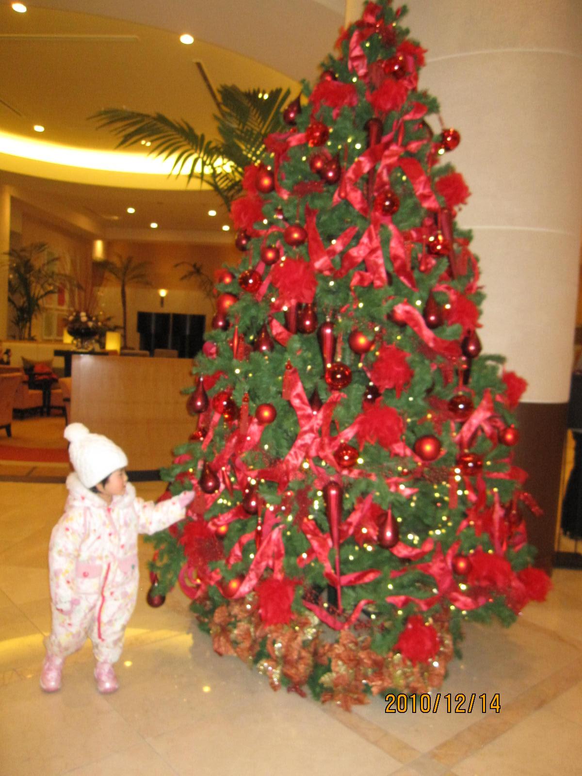 。・☆クリスマス市☆・。_f0231042_1801215.jpg