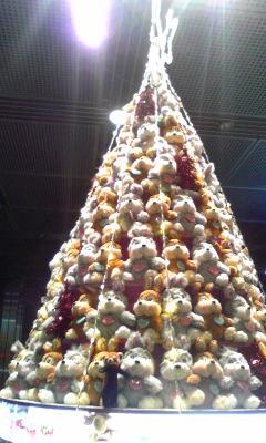 Merry Christmas_f0014748_21325986.jpg