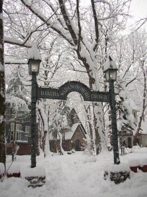 和田野の森に雪が降りました。_b0147051_13581817.jpg