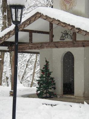 和田野の森に雪が降りました。_b0147051_1415984.jpg