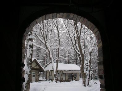 和田野の森に雪が降りました。_b0147051_14271090.jpg