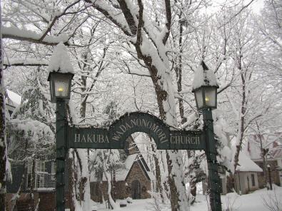 和田野の森に雪が降りました。_b0147051_1495279.jpg