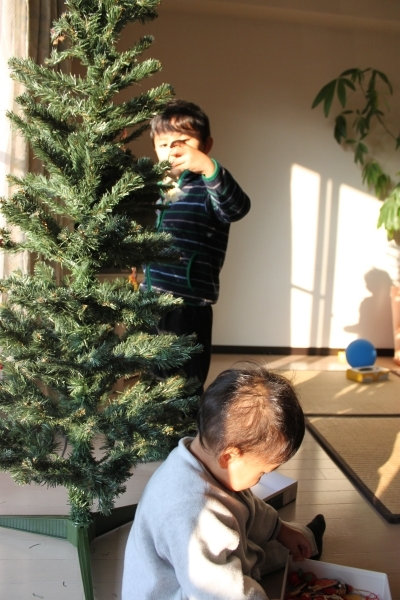 Tree2010