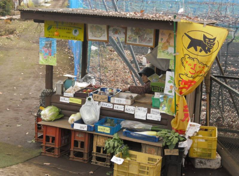 地産地消、野菜の直売_f0059673_2232272.jpg