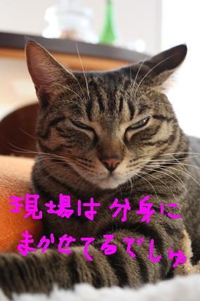 d0009175_20101976.jpg
