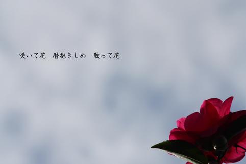 b0146278_19161340.jpg
