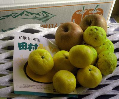 りんご・みかん・ゆず