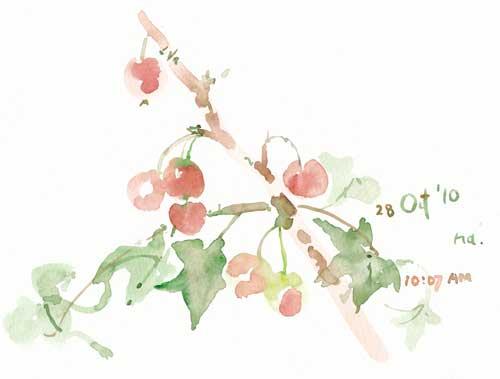 秋に過ごした時間 3_d0115092_1493636.jpg