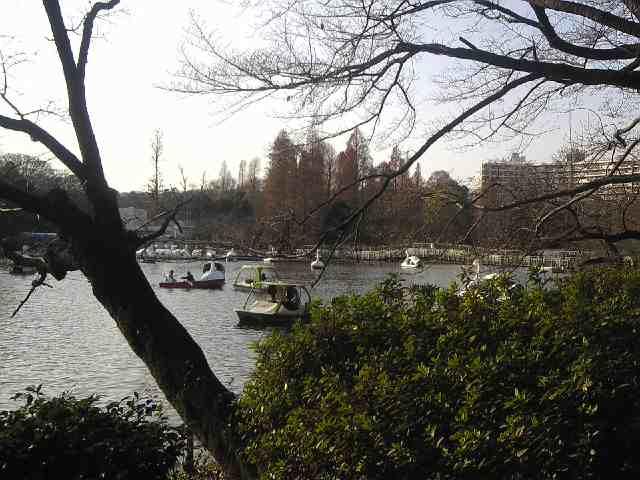 公園ですなー_b0080104_1454583.jpg