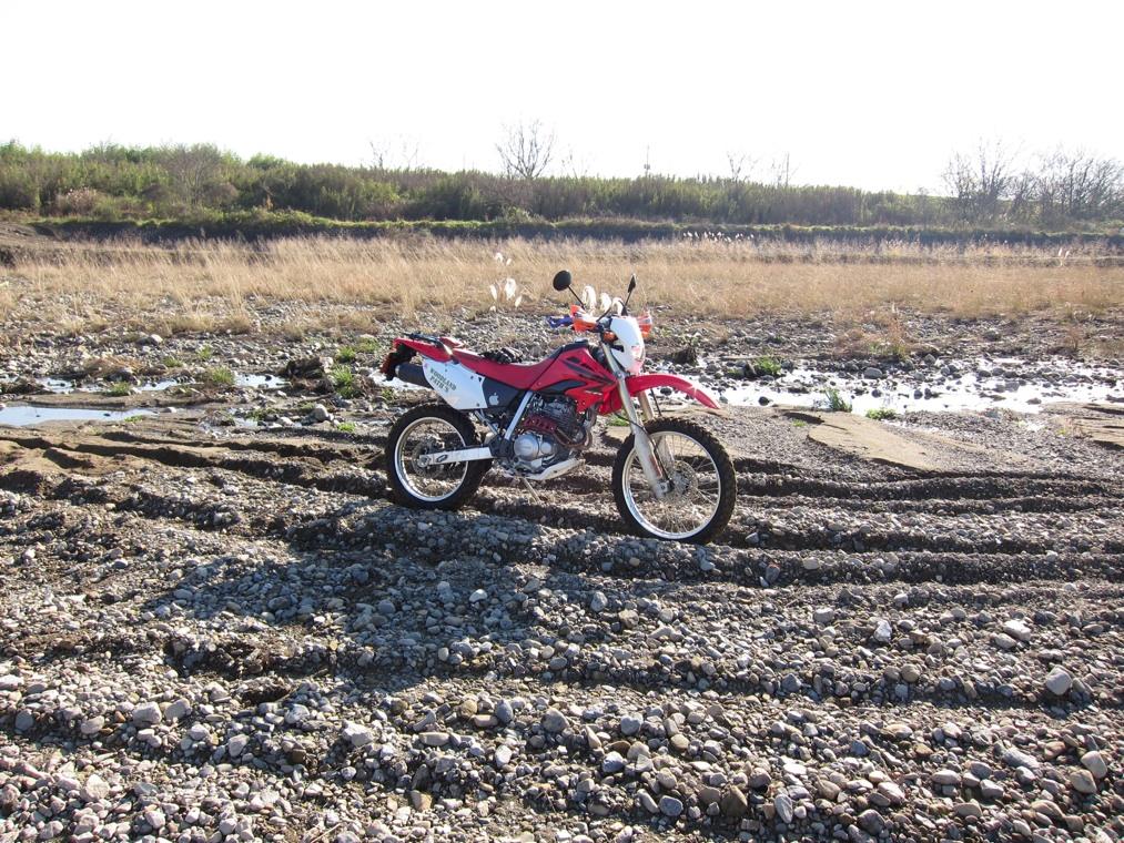 河原で遊ぶ_f0141609_1734398.jpg