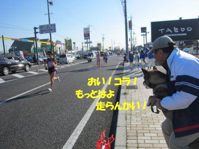 f0143123_20321199.jpg