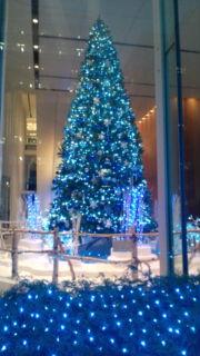 Merry Christmas._b0157157_218628.jpg