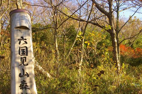 鎌倉の美しい里山継承プロジェクトを11・1・22からスタート_c0014967_21325530.jpg