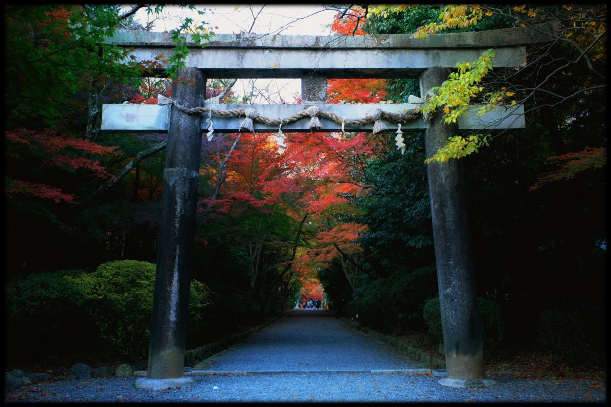 紅葉 2010 <大原野神社> 4_f0021869_2123611.jpg