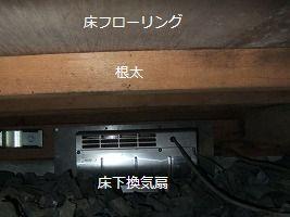 b0003400_163558.jpg