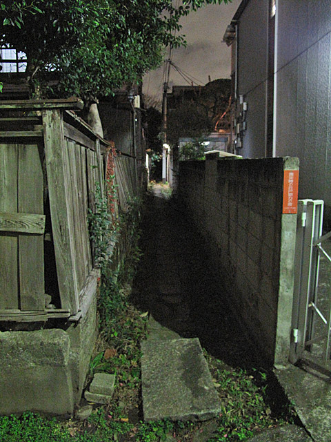 みちくさ学会記事拾遺 桃園川たかはら支流(仮)_c0163001_025394.jpg