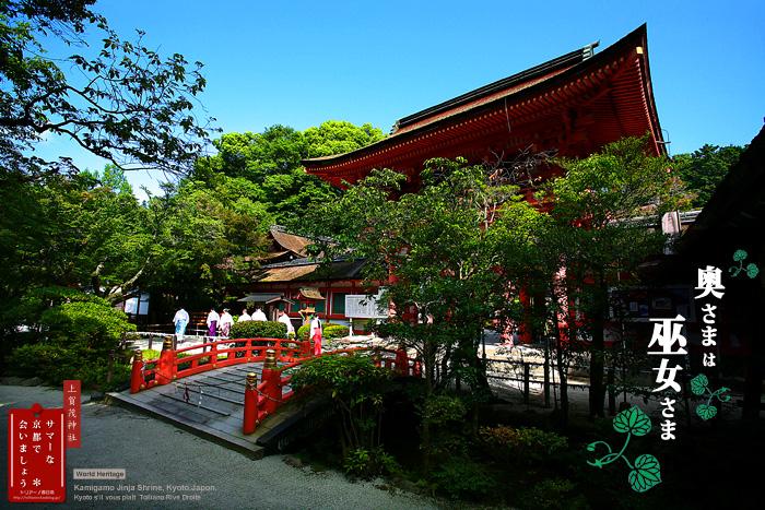 京都シルヴプレ167 夏の上賀茂さん 2_f0038408_17153359.jpg
