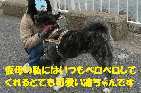 f0121712_1211981.jpg