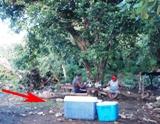 忘年ピクニック <2010年版>_a0043520_13461010.jpg