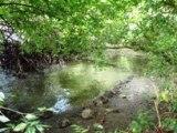 タラング島の歴史_a0043520_14113866.jpg
