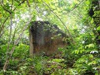 タラング島の歴史_a0043520_144431.jpg
