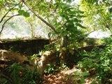タラング島の歴史_a0043520_1452414.jpg