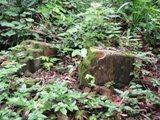 タラング島の歴史_a0043520_145965.jpg