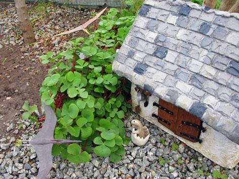 ガーデン・スモールハウス物語  続  オキザリスの森で_f0129726_22225047.jpg
