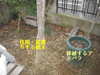 f0031037_18415823.jpg