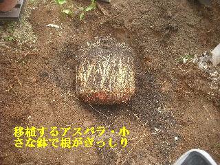 f0031037_18424123.jpg